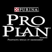 Pro Plan Cat Food Range
